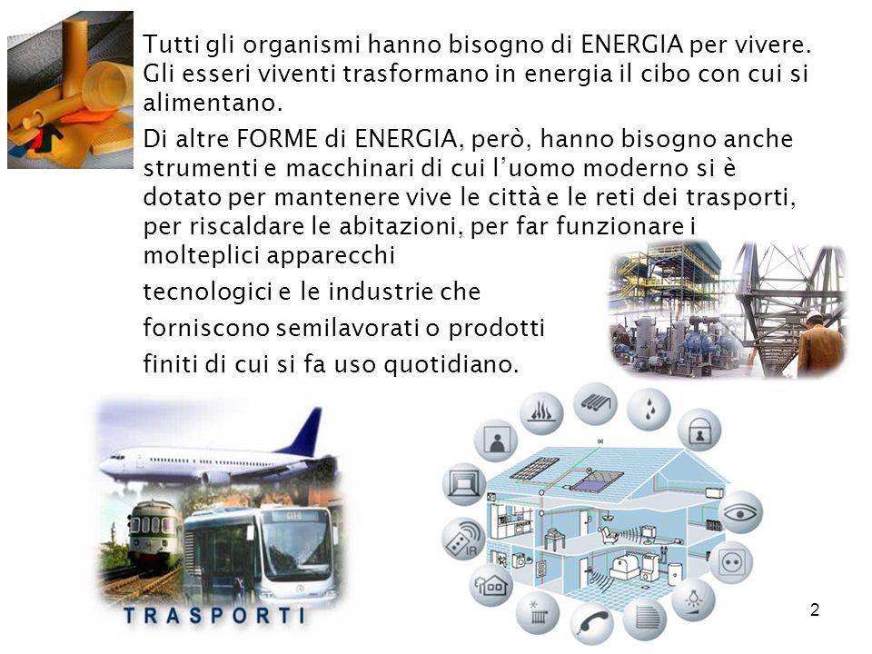 Tutti gli organismi hanno bisogno di ENERGIA per vivere