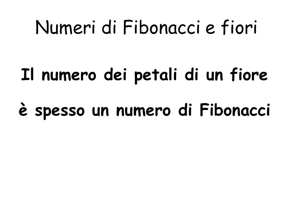 Numeri di Fibonacci e fiori