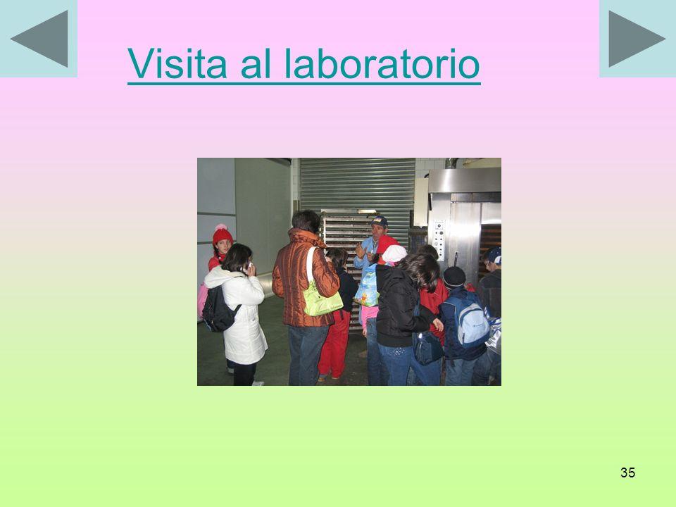 Visita al laboratorio