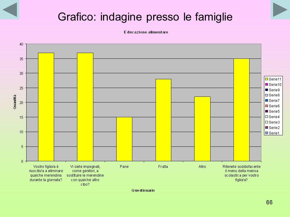 Grafico: indagine presso le famiglie