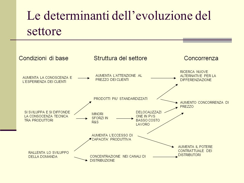 Le determinanti dell'evoluzione del settore