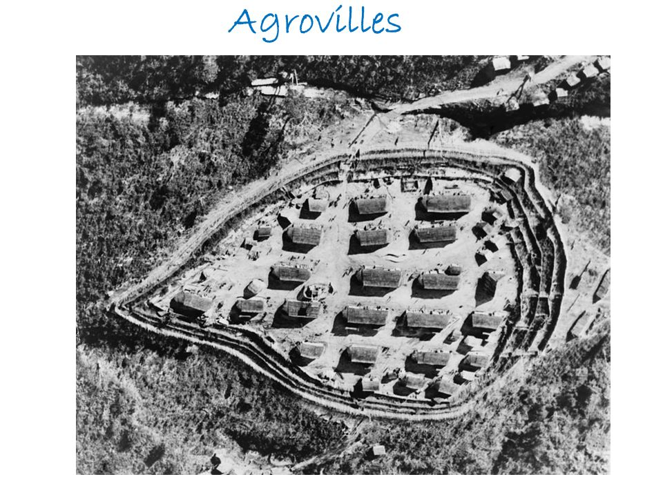 Agrovilles