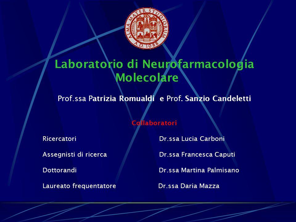Laboratorio di Neurofarmacologia Molecolare