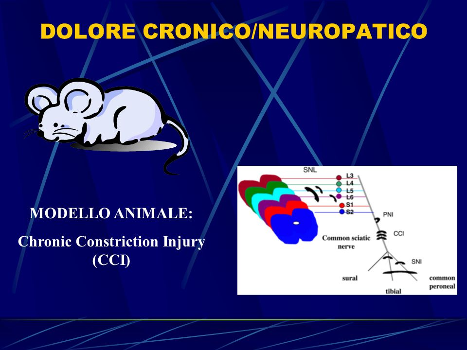 DOLORE CRONICO/NEUROPATICO