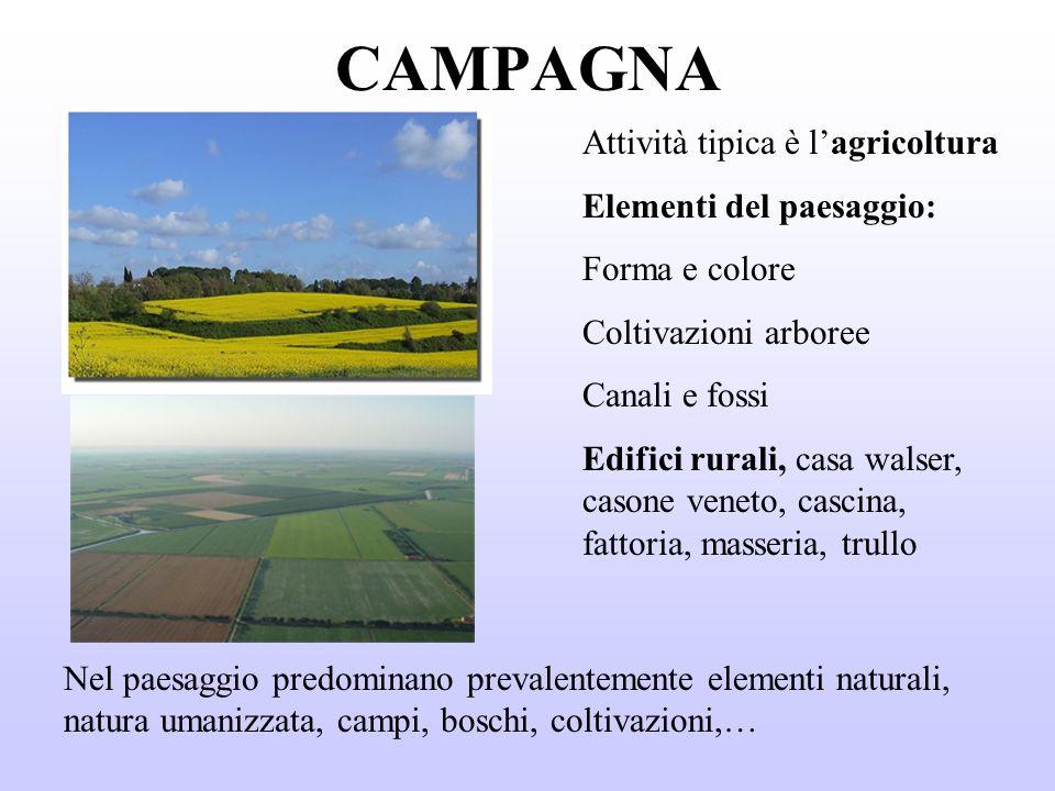 CAMPAGNA Attività tipica è l'agricoltura Elementi del paesaggio: