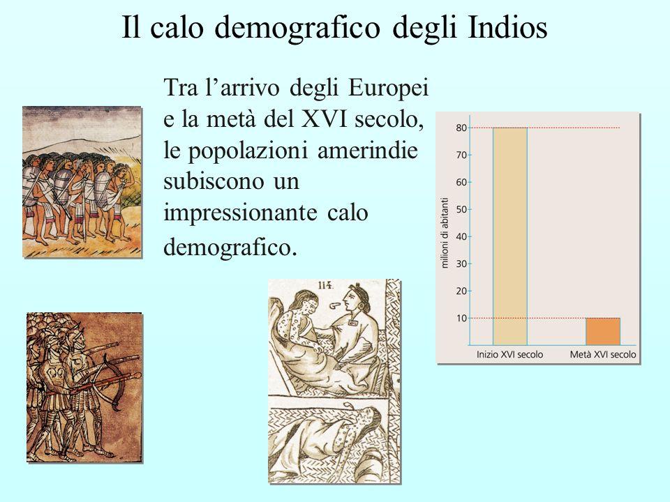Il calo demografico degli Indios