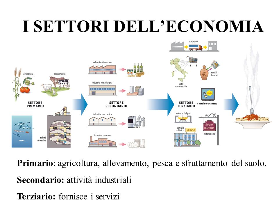 I SETTORI DELL'ECONOMIA