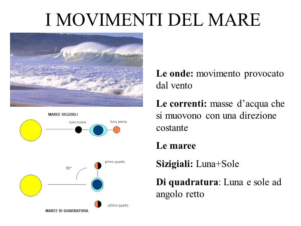 I MOVIMENTI DEL MARE Le onde: movimento provocato dal vento