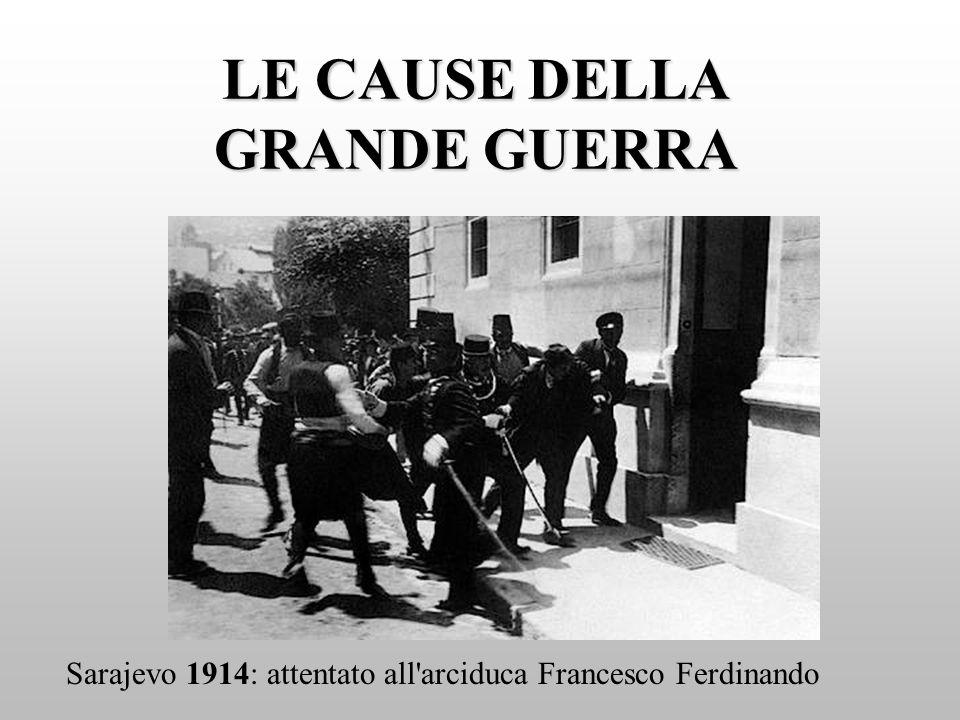 LE CAUSE DELLA GRANDE GUERRA
