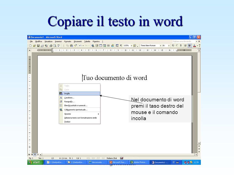 Copiare il testo in word