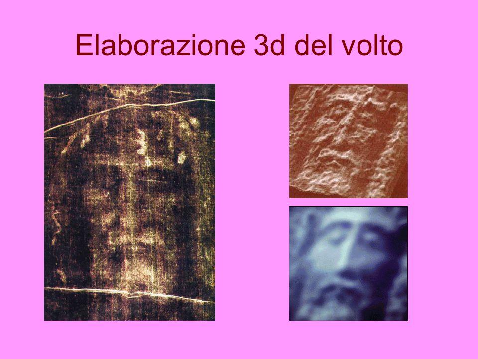Elaborazione 3d del volto