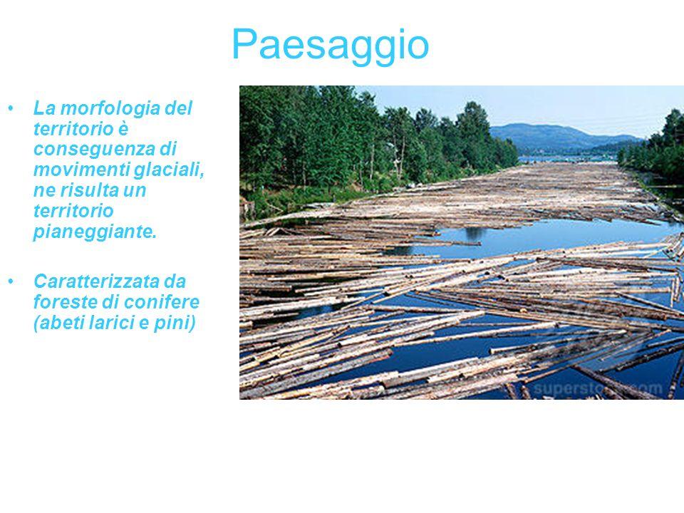 Paesaggio La morfologia del territorio è conseguenza di movimenti glaciali, ne risulta un territorio pianeggiante.