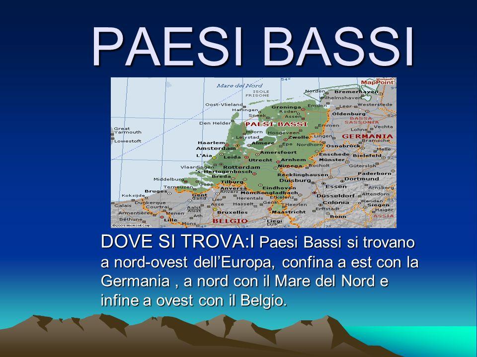 Paesi bassi dove si trova i paesi bassi si trovano a nord for Dove si trova la camera dei deputati