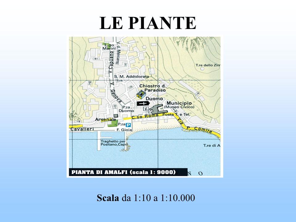 LE PIANTE Scala da 1:10 a 1:10.000