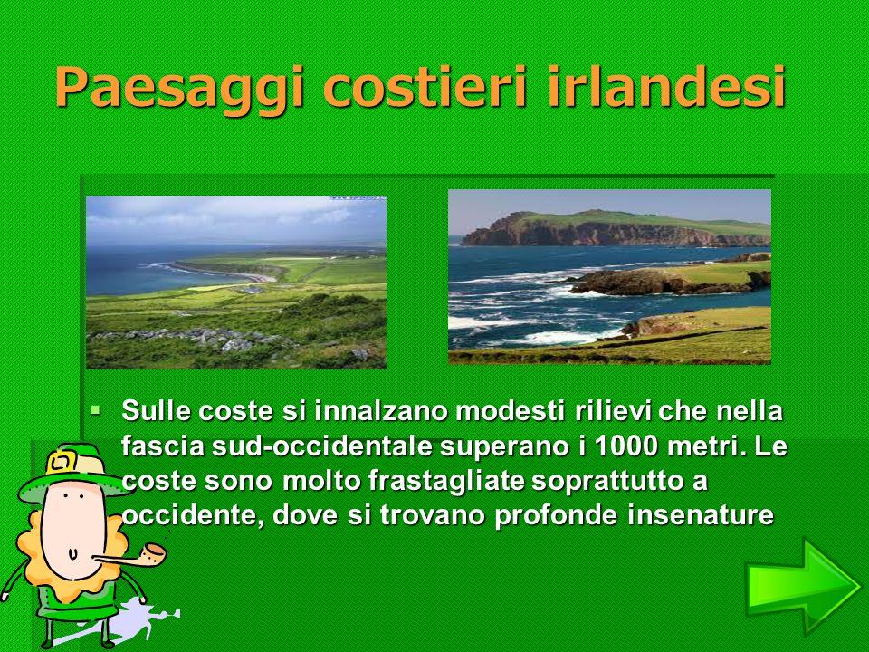 Paesaggi costieri irlandesi