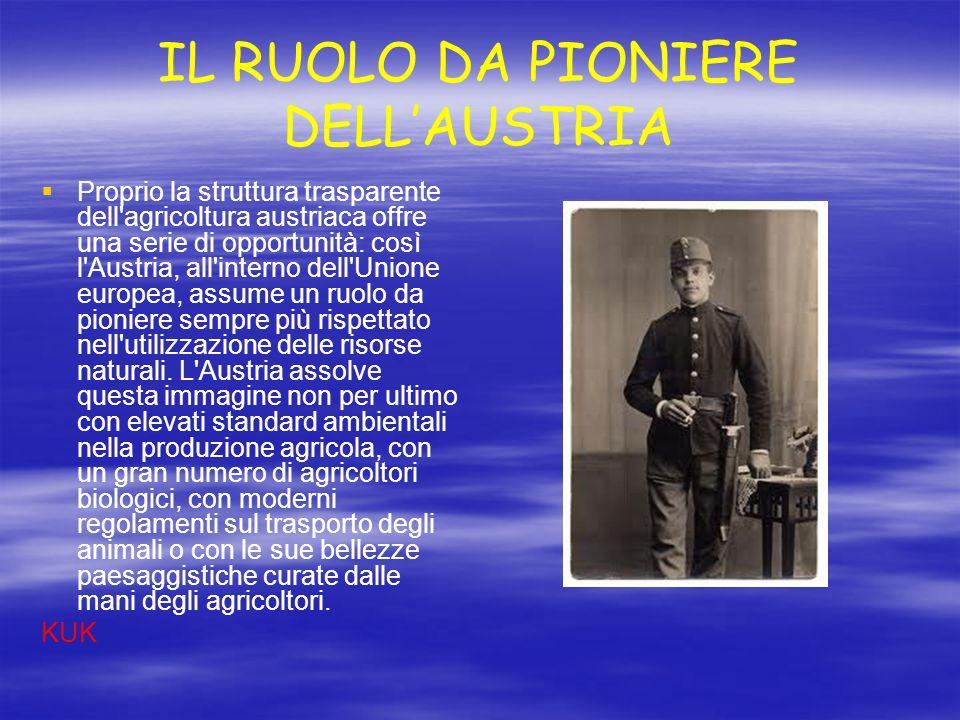 IL RUOLO DA PIONIERE DELL'AUSTRIA