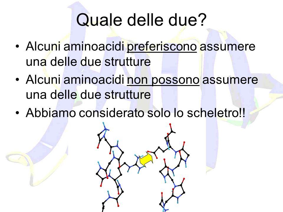 Quale delle due Alcuni aminoacidi preferiscono assumere una delle due strutture. Alcuni aminoacidi non possono assumere una delle due strutture.