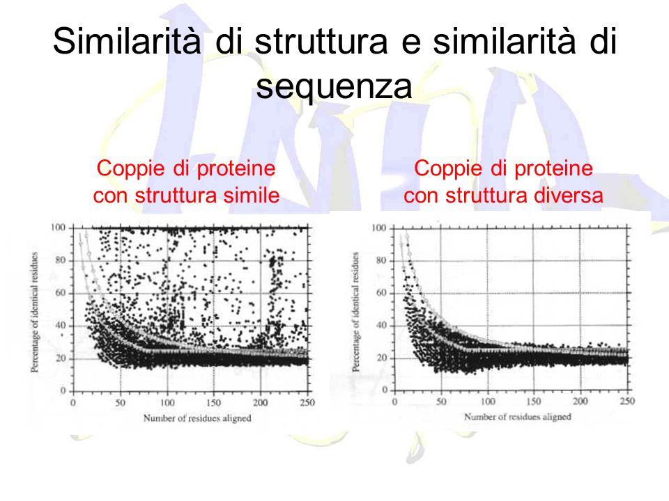 Similarità di struttura e similarità di sequenza