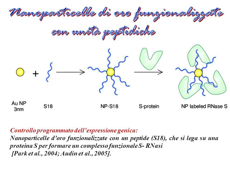 Nanoparticelle di oro funzionalizzate