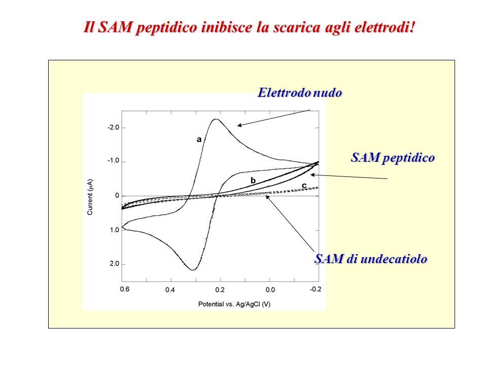 Il SAM peptidico inibisce la scarica agli elettrodi!