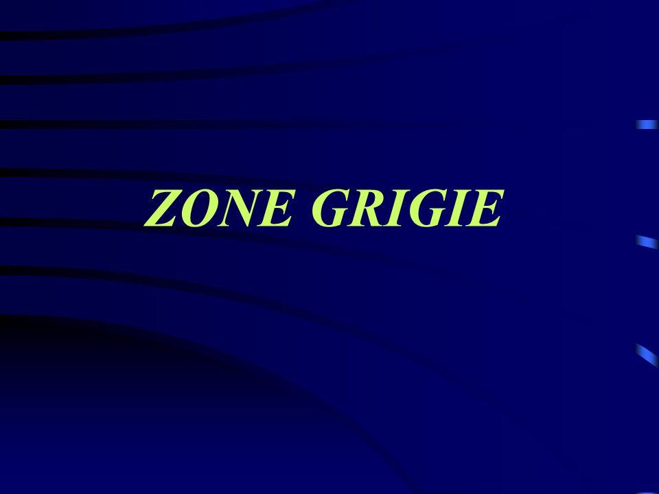 ZONE GRIGIE