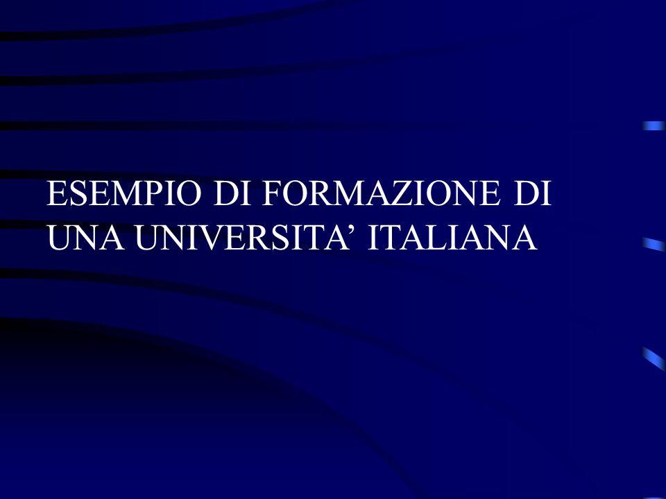 ESEMPIO DI FORMAZIONE DI UNA UNIVERSITA' ITALIANA