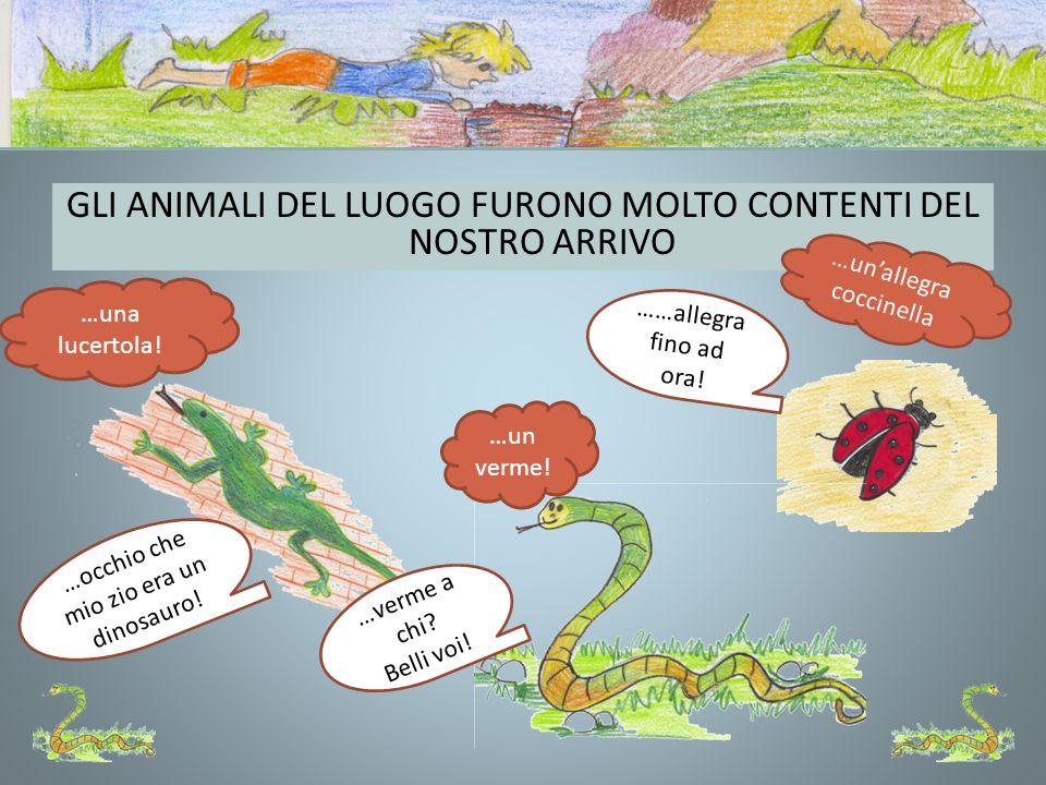 GLI ANIMALI DEL LUOGO FURONO MOLTO CONTENTI DEL NOSTRO ARRIVO