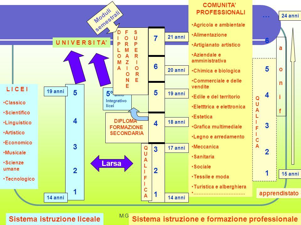 Sistema istruzione liceale