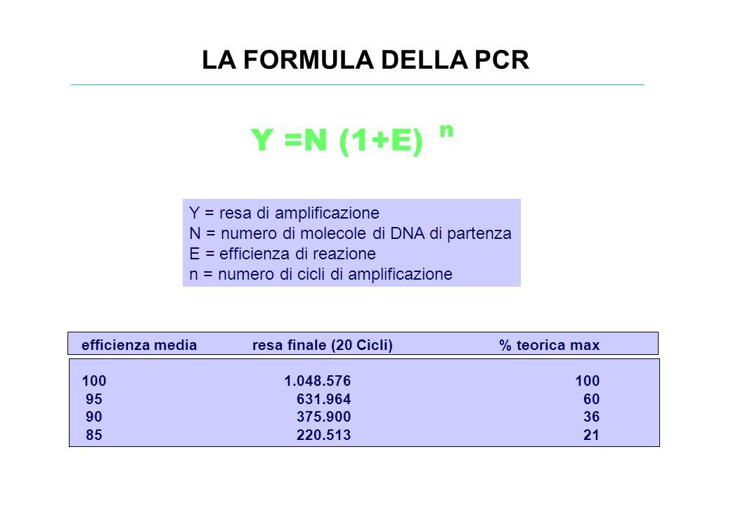 Y =N (1+E) LA FORMULA DELLA PCR n Y = resa di amplificazione