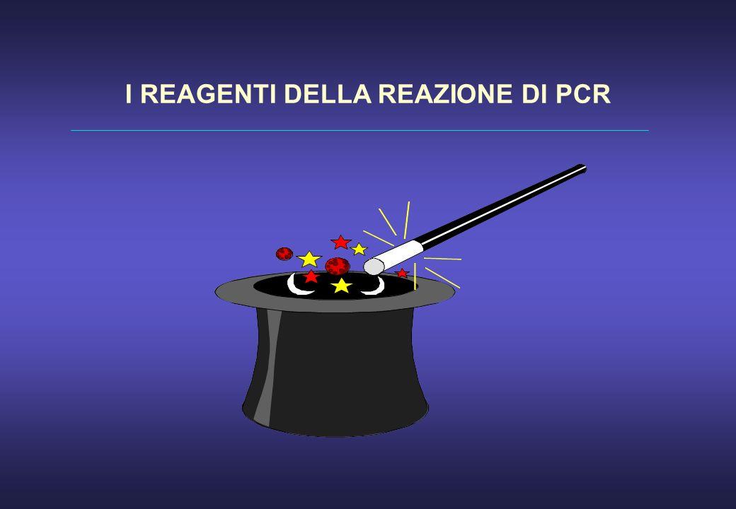I REAGENTI DELLA REAZIONE DI PCR