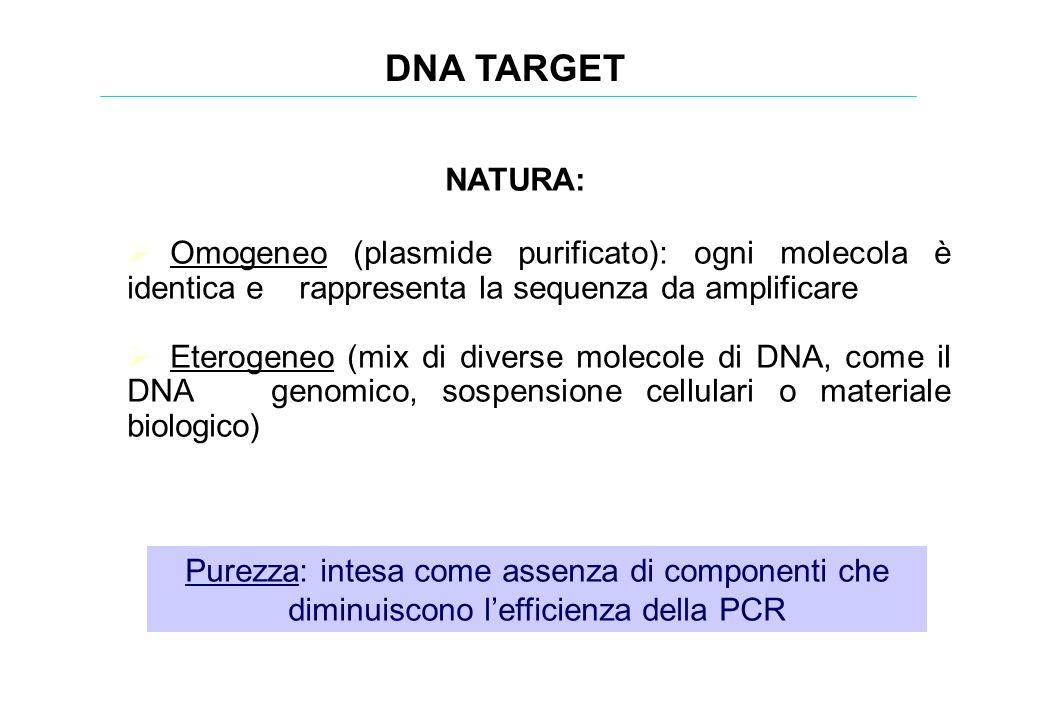 DNA TARGET NATURA: Omogeneo (plasmide purificato): ogni molecola è identica e rappresenta la sequenza da amplificare.