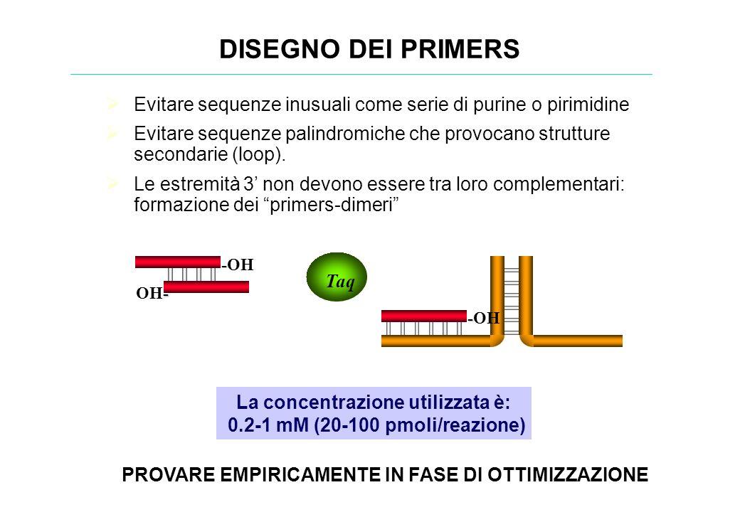 DISEGNO DEI PRIMERS Evitare sequenze inusuali come serie di purine o pirimidine.
