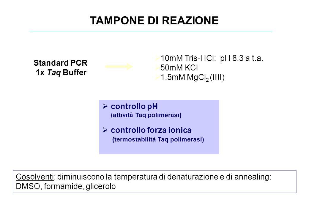 TAMPONE DI REAZIONE Standard PCR 1x Taq Buffer