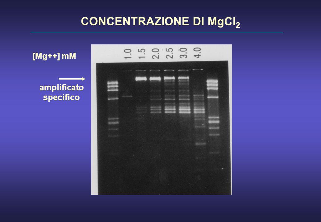 CONCENTRAZIONE DI MgCl2