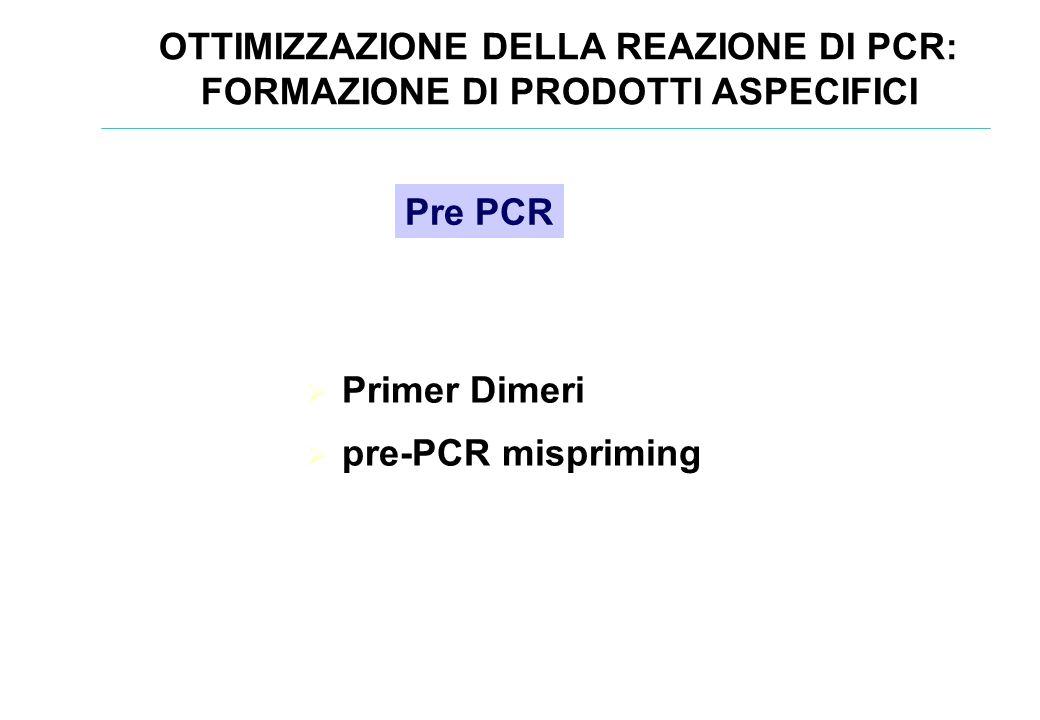 OTTIMIZZAZIONE DELLA REAZIONE DI PCR: