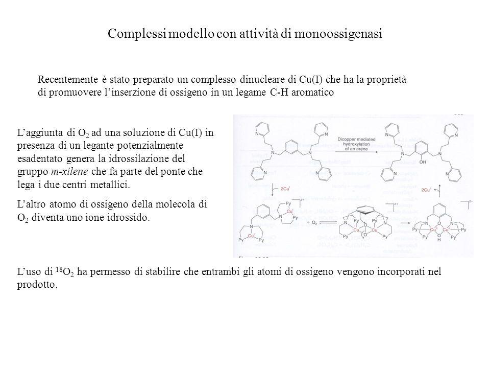 Complessi modello con attività di monoossigenasi