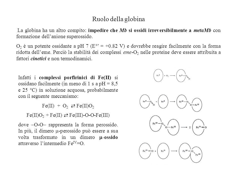 Fe(II)O2 + Fe(II) ⇄ Fe(III)-O-O-Fe(III)