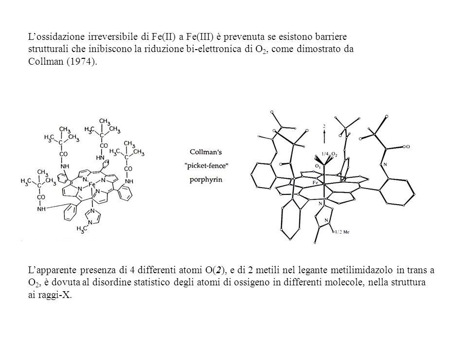 L'ossidazione irreversibile di Fe(II) a Fe(III) è prevenuta se esistono barriere strutturali che inibiscono la riduzione bi-elettronica di O2, come dimostrato da Collman (1974).