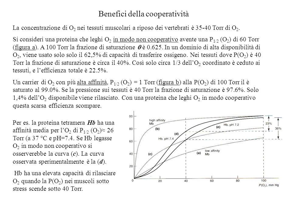 Benefici della cooperatività