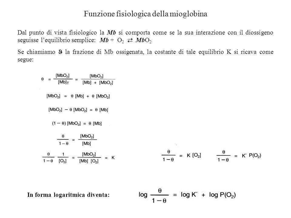 Funzione fisiologica della mioglobina