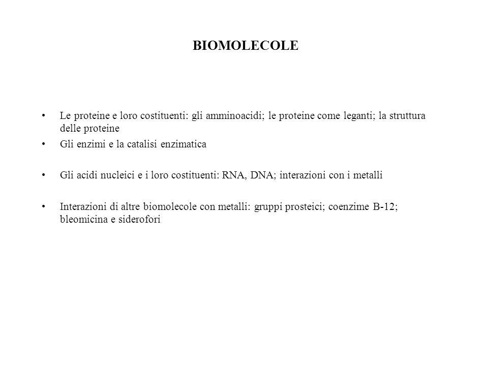 BIOMOLECOLE Le proteine e loro costituenti: gli amminoacidi; le proteine come leganti; la struttura delle proteine.