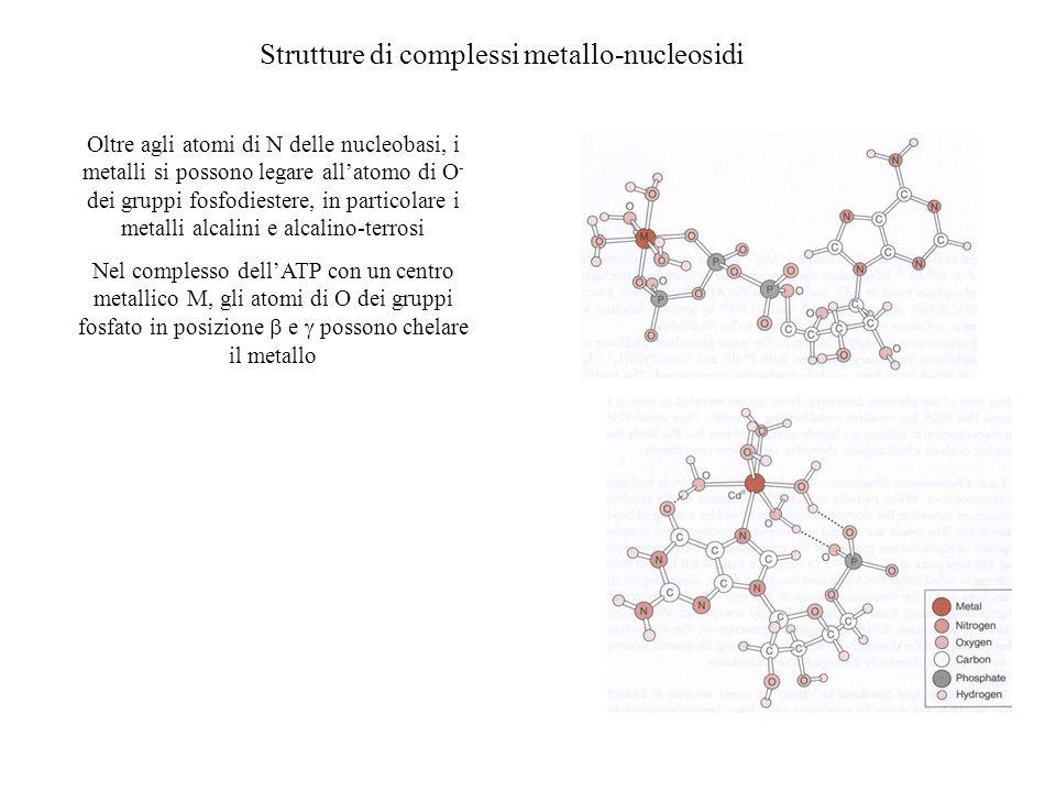 Strutture di complessi metallo-nucleosidi