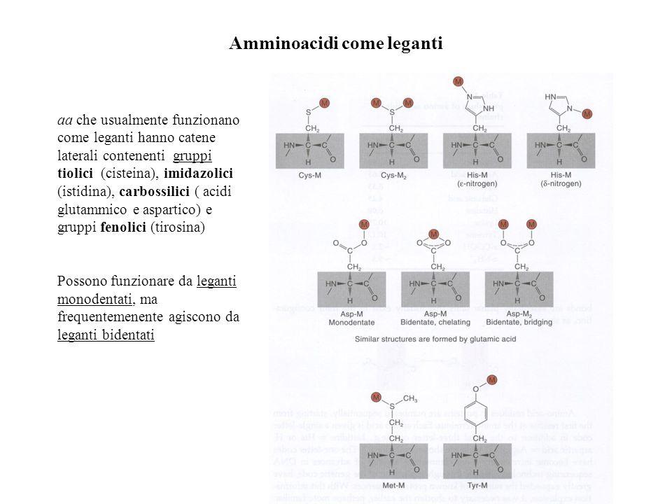 Amminoacidi come leganti