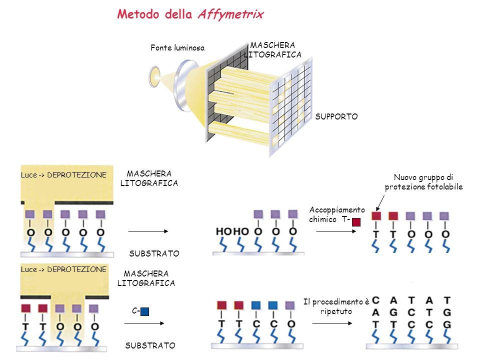 Metodo della Affymetrix