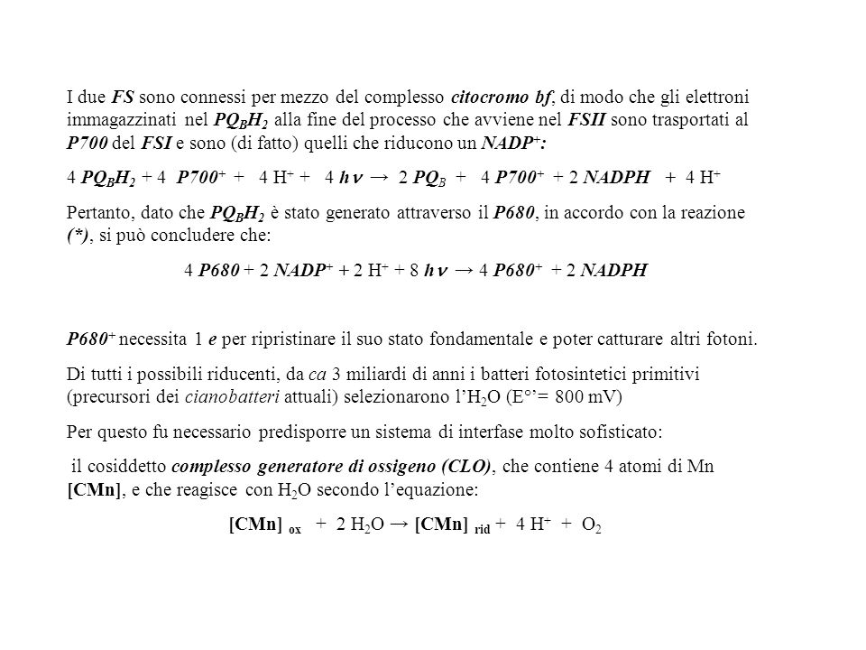 4 PQBH2 + 4 P700+ + 4 H+ + 4 h → 2 PQB + 4 P700+ + 2 NADPH + 4 H+