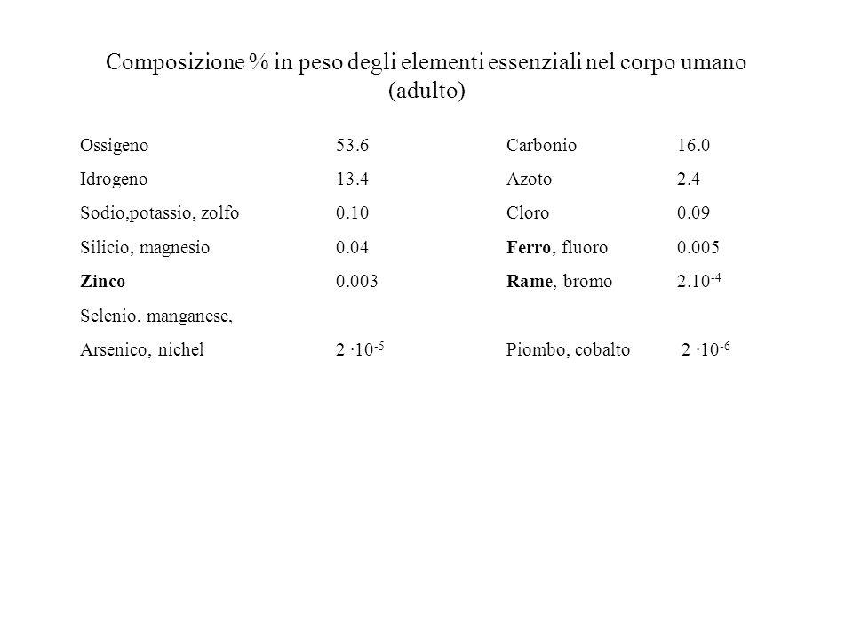 Composizione % in peso degli elementi essenziali nel corpo umano (adulto)