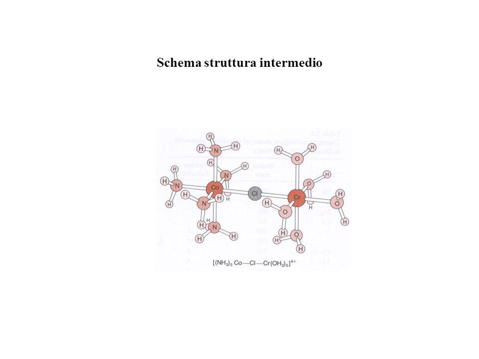 Schema struttura intermedio