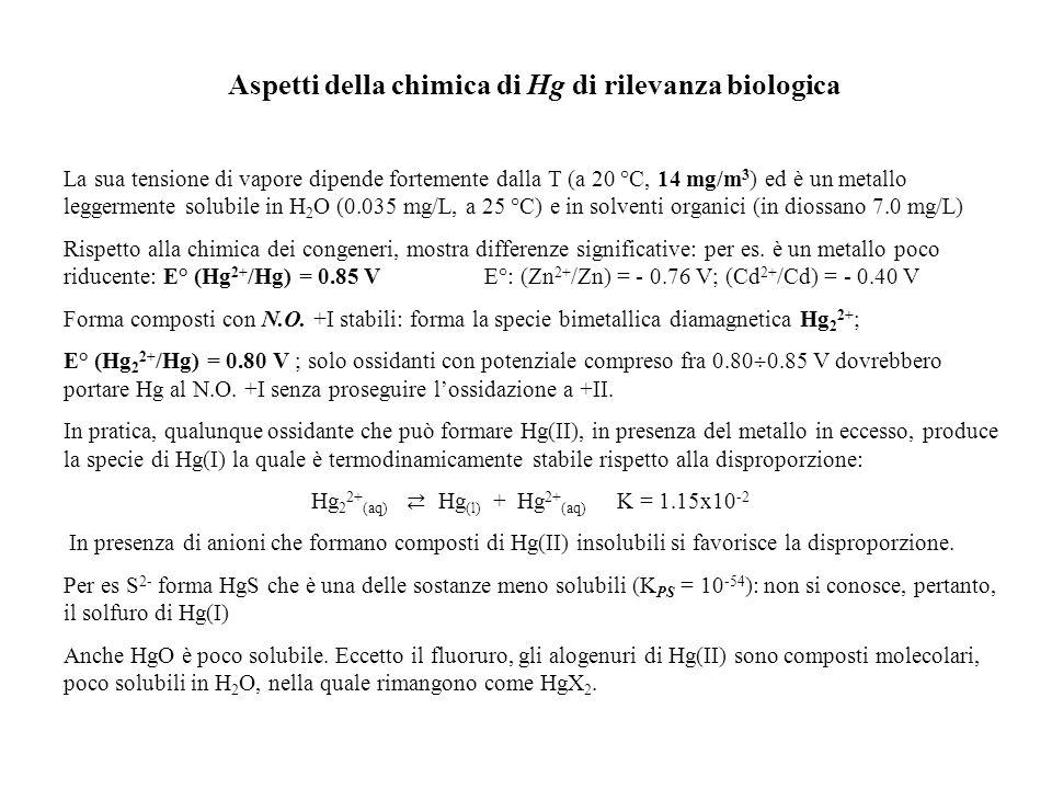 Aspetti della chimica di Hg di rilevanza biologica