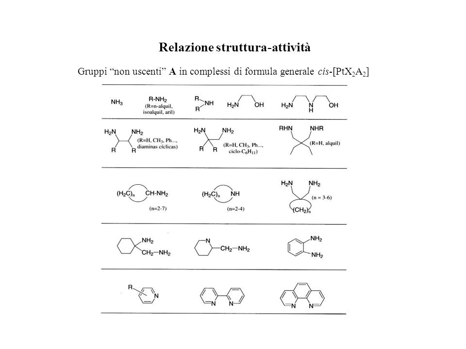 Relazione struttura-attività