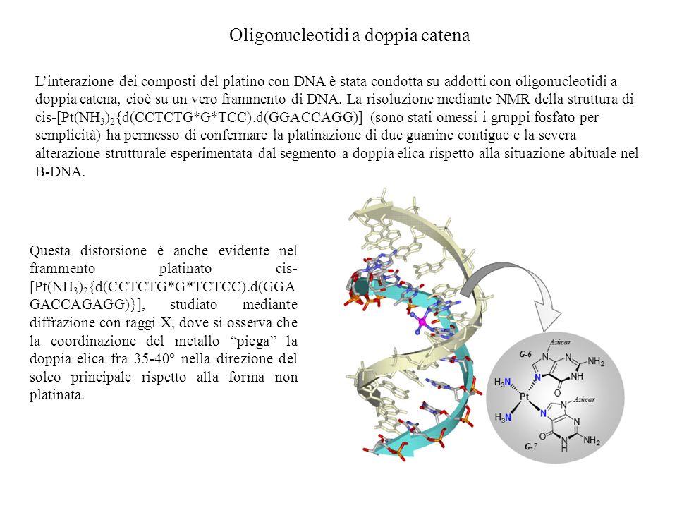 Oligonucleotidi a doppia catena
